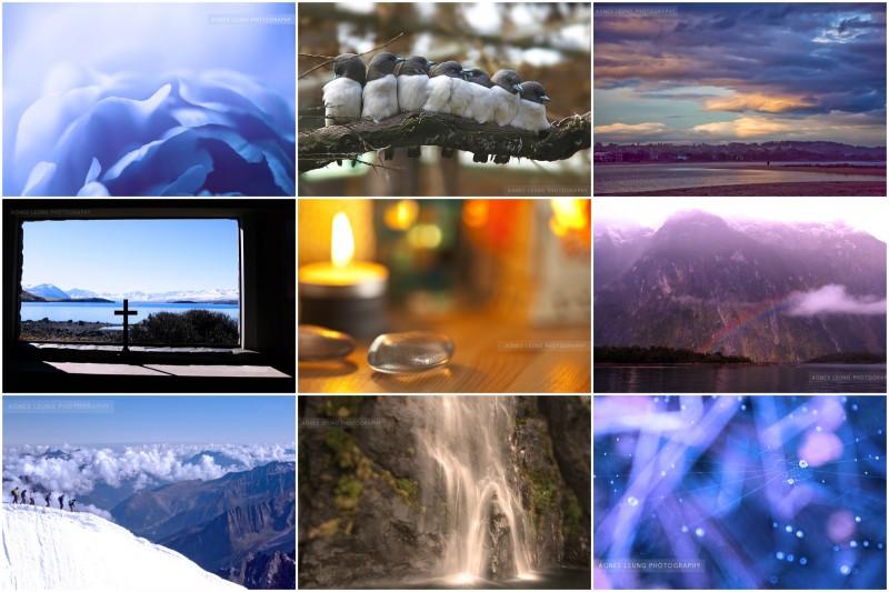 1.1.2015-goldenlamp-collage